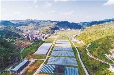 【收藏+转发】116个!第三批国家农村产业融合发展示范园名单公布