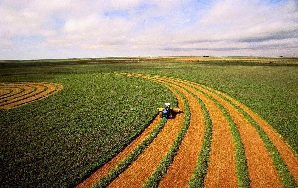 """【洞察】《2020中国农业经济发展报告》发布,""""跑步前进""""的产业有……"""
