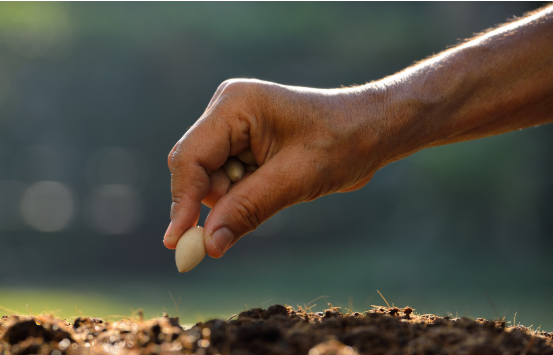 【政策解读】2021年农业农村部重点扶持这28个项目!