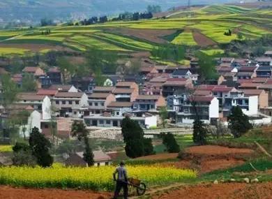 农村集体产权改革顶层设计将出 赋予农民六项权利