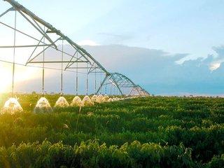 国家现代农业产业园:中央给予财政补贴或达30多亿,园区农民收入平均高于当地30%以上
