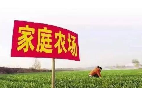 家庭农场有哪些弯路?价值300万的几个忠告!