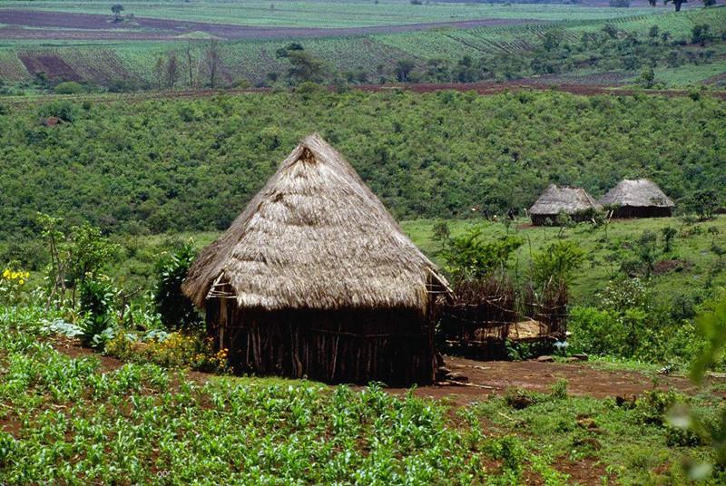 敲黑板!五大基本原则教你做别具一格的生态旅游农庄