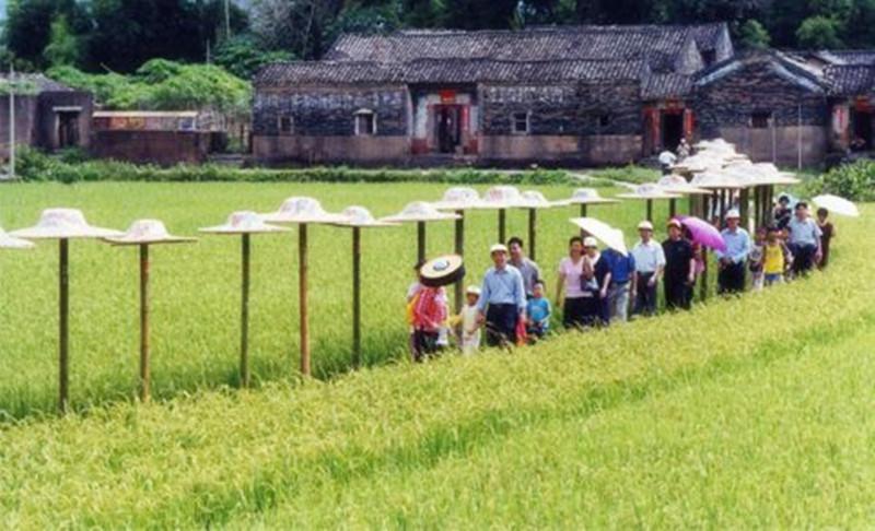 思考!休闲产业如何与农业完美嫁接