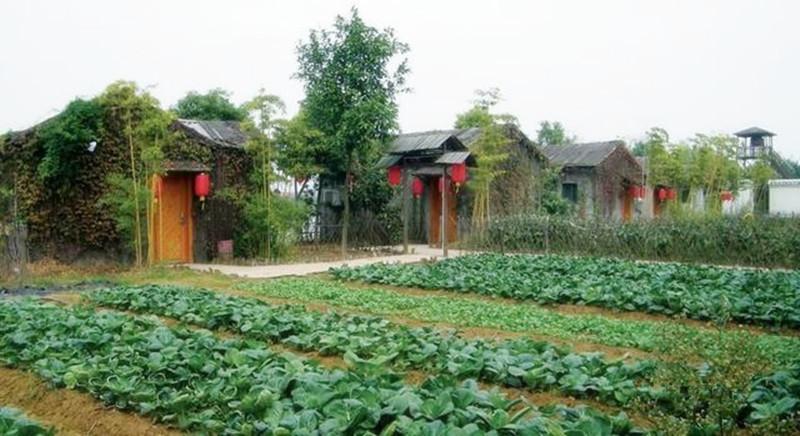 农家乐和休闲农庄做主题设计时不可不知这5个秘诀!