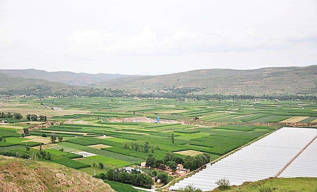 三产融合颠覆传统农业,五大模式助推农村新业态