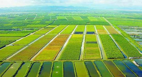 创业小黑板|国家农村产业示范园:三产融合的加速器(附148个名单)