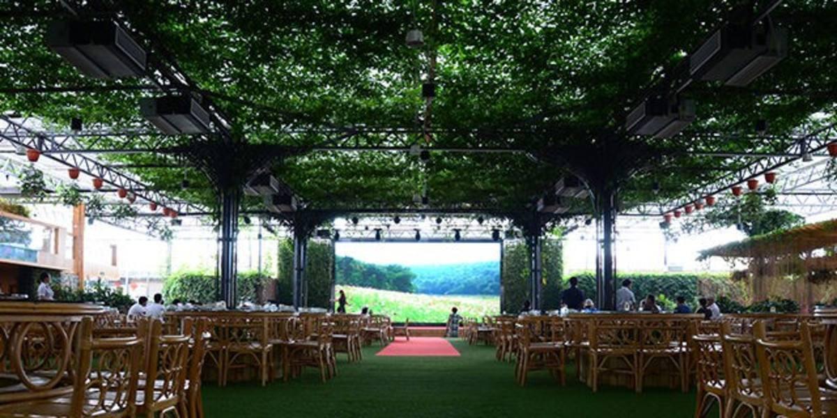 创业小黑板|生态餐厅:下一个百万富翁就是你!