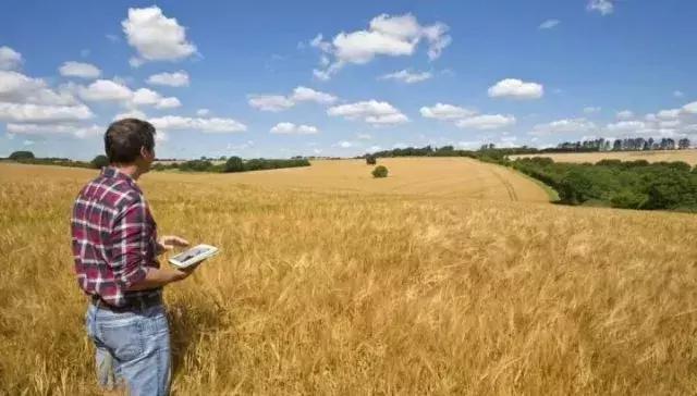 如何运用互联网视角打造休闲农庄的核心引爆点!