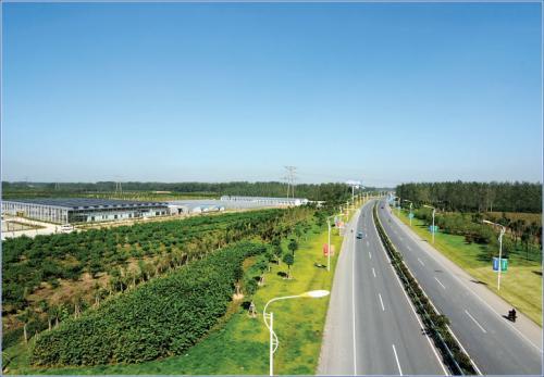 三农日报|国家继续财政扶持现代农业产业园;鸵鸟主题餐厅:年入500万
