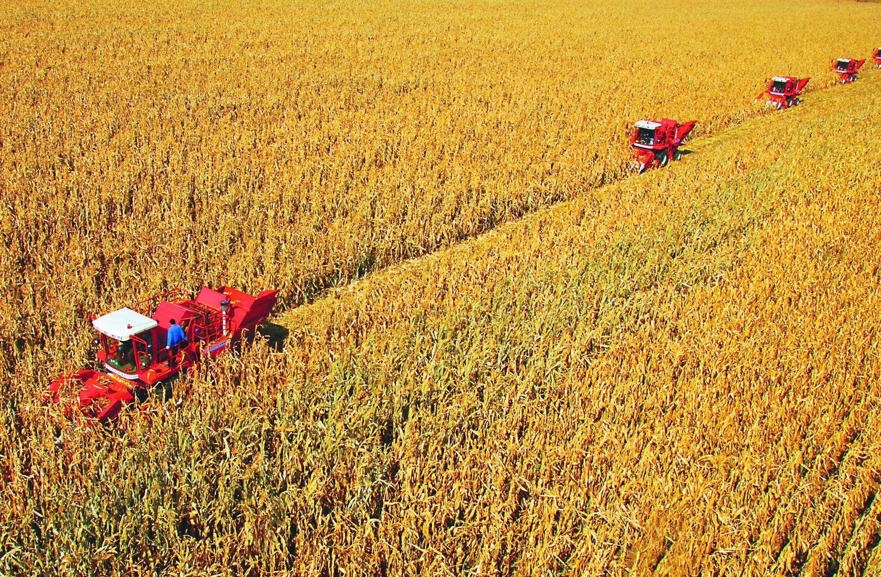 梳理|12种农业新业态(超级干货)