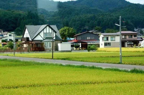 借鉴 从美国、日本农业的发展看我国农业的未来