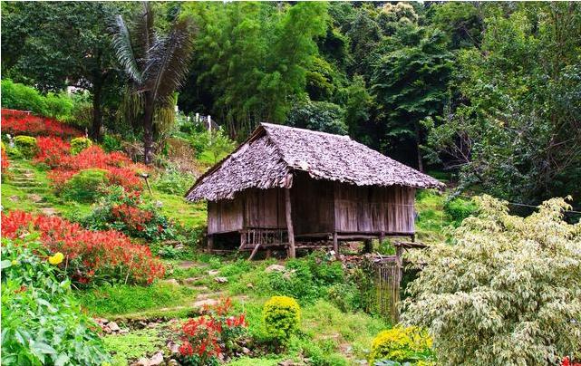 如何提高休闲农业和乡村旅游的产业的竞争力?关键在三点