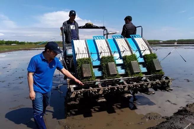 中国农业的5大商业变革:不是时代抛弃我们,而是我们放弃时代
