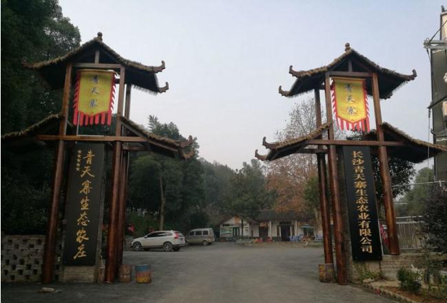 青天寨:中小型农庄快速转型发展的样板