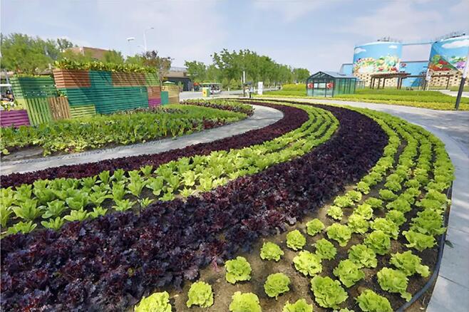 都市农业:9大经营模式、4个商业商业模式、10个案例剖析