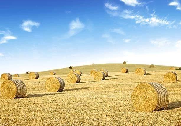 农业为何要搞众筹?筹钱、筹人、筹资源(附4个案例)