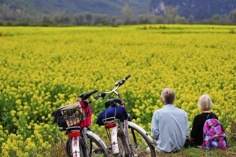 三农日报 国务院:扶持甜味剂、功能糖发展;特色生态农业之路意义重大