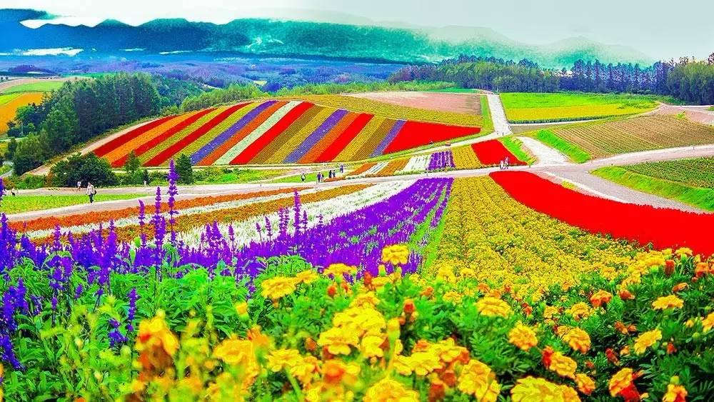 【经验操盘】休闲农业轻资产运营,让你的农庄不再缩水!