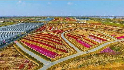 今后未来农业的发展方向