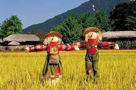 【政策解读】休闲农业如何健康发展?农业农村部发布6条对策!