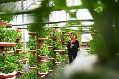 三农日报 我国将加快农业人工智能研发应用;乡村旅游成农村融合发展样板