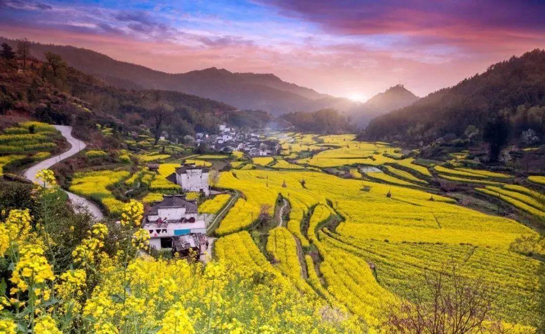 【产业深度】2020年国家将大力发展田园综合体!