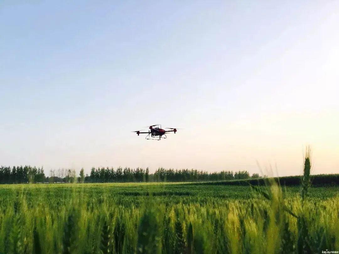 """【海外模式】日本农业""""第六产业""""到底是什么?怎么做?"""