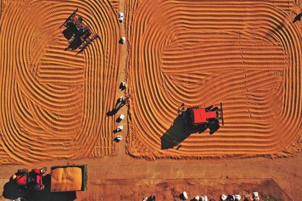 北大荒:千亿级的休闲农业巨头!