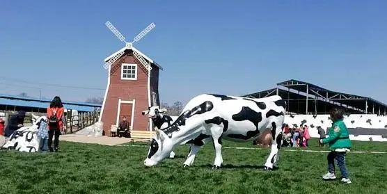 【实操案例】如何发展奶业休闲观光牧场?你想知道的都在这里!