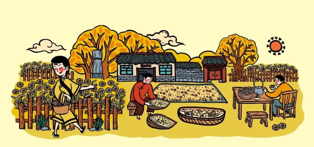 【标杆案例】乡村品牌案例:小郭家村,一朵菊花,带火一个村
