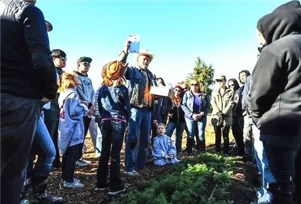【实操案例】50亩地,2个人,年入百万,这才是未来农业!