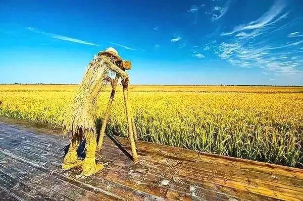 【模式研究】八大农业创新模式全面解读