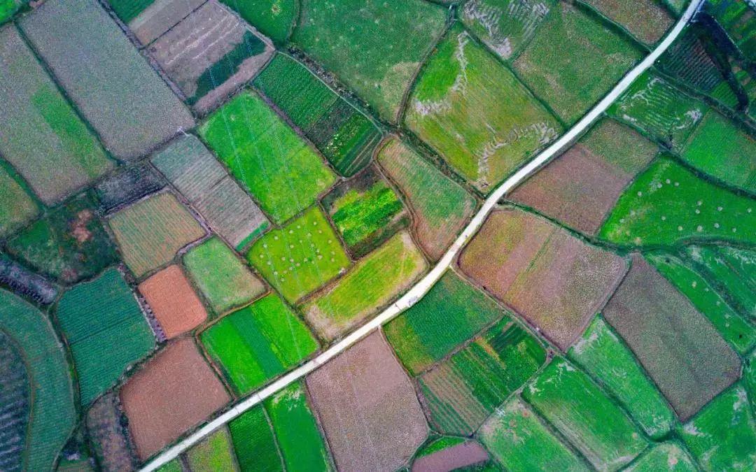 【模式研究】八种农业新模式