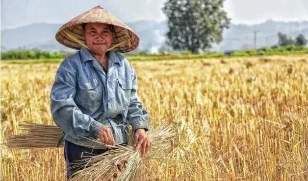 【模式研究】农村新商机:未来20年,哪种农业新模式将崛起