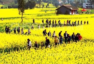 你对乡村旅游与休闲农业用地政策了解多少?