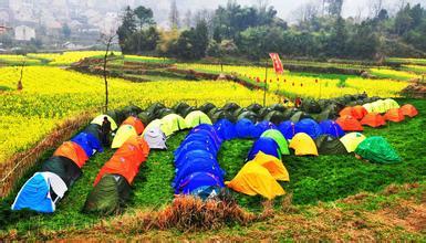 今年上半年,四川休闲农业和乡村旅游收入竟然448亿元!