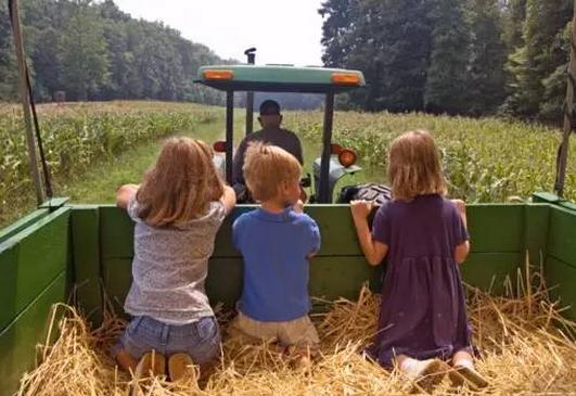 亲子农业未来的发展前景及六大产品类型,新农人必看!