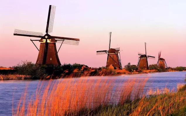 对于荷兰农业的发展模式,国内农业应该怎样回应?