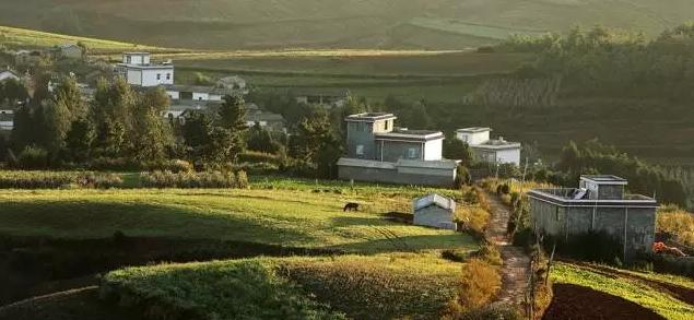干特色农业需要注意7大坑!