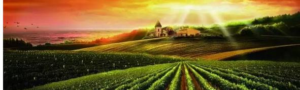 未来农业细分领域9大趋势:你认为哪一个会成真风口(好文推荐)