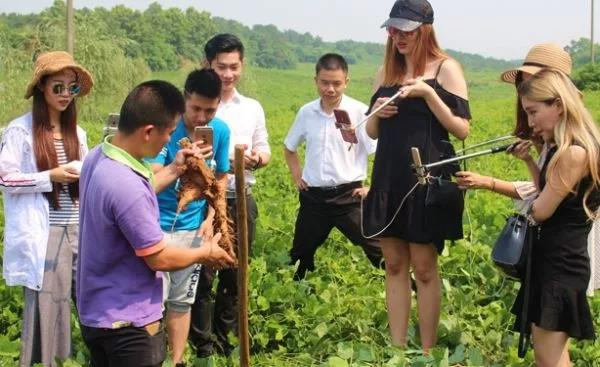 5000种农业干法|传统种植养殖基地,如何转型做休闲农庄?