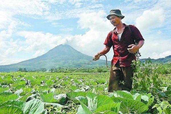 农药行业未来面临五大趋势!别死磕,请顺流而为