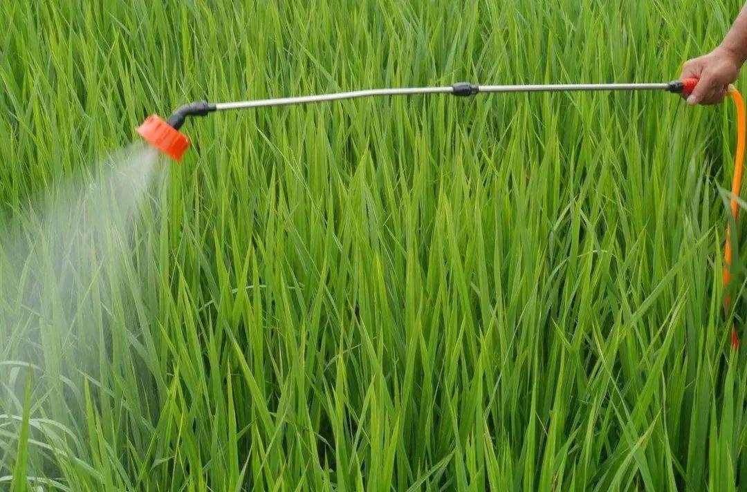 【趋势预测】农药行业未来面临五大趋势!