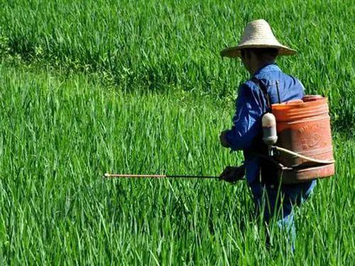 【行业报告】智库报告:看化肥农药农机全球市场发展趋势如何?