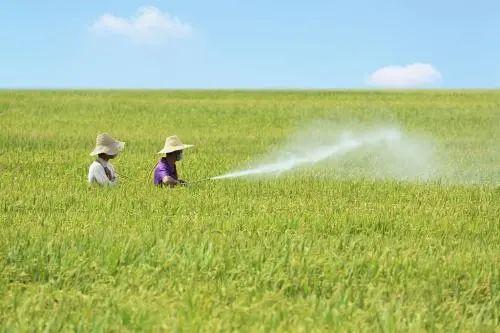 """【趋势预判】农药产业大转移!千亿级农化产业资金""""砸向""""中西部"""