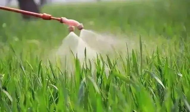 【深度剖析】我国农药行业存在的主要问题及相关政策建议