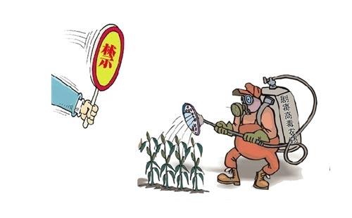 农残那么高,食品安全都保证不了,为什么还不禁止使用农药?