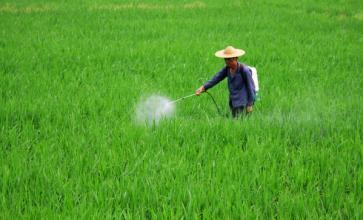 """分析!看看""""中国式农药电商""""是什么样的?"""