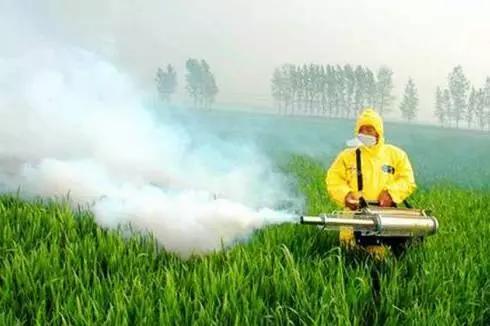 农药没效果原来因为这!影响农药药效的常见原因